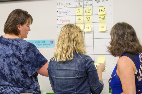 Teachers reflect on the data recorded